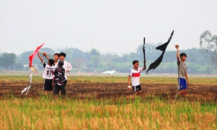Tả cánh đồng lúa chín