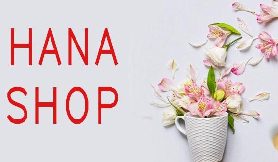 Thông tin về Hanashop